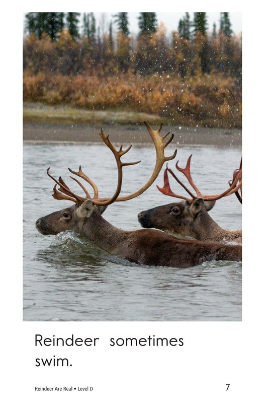 Book Preview For Reindeer Are Real Page 7