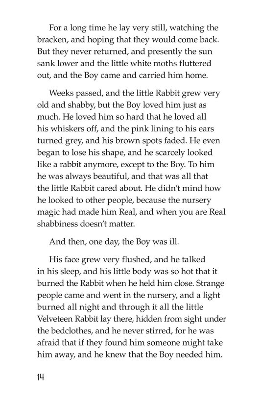 Book Preview For The Velveteen Rabbit Page 14