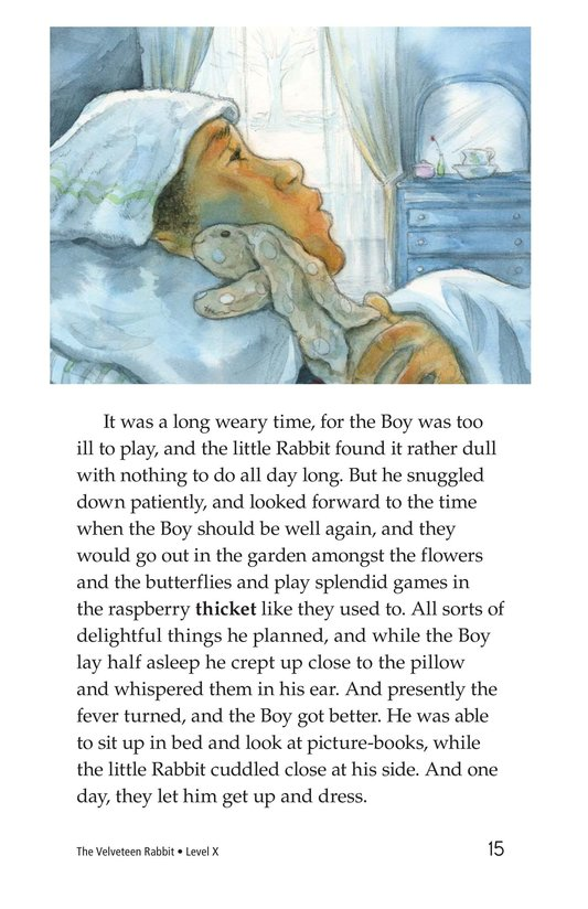 Book Preview For The Velveteen Rabbit Page 15
