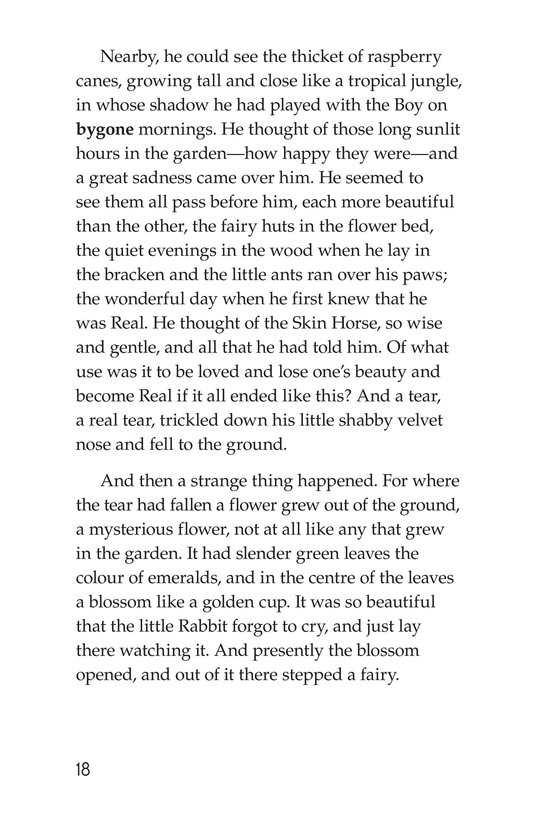 Book Preview For The Velveteen Rabbit Page 18