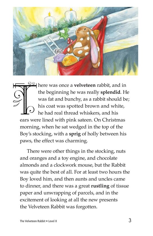 Book Preview For The Velveteen Rabbit Page 3