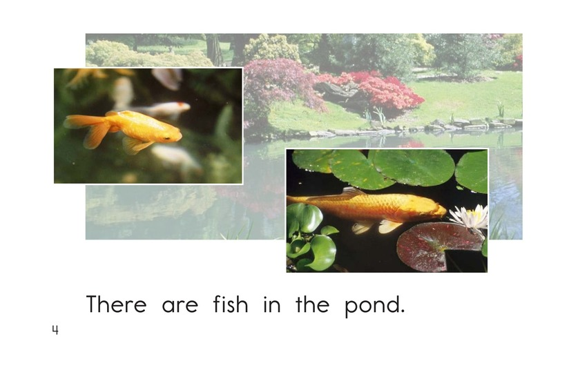 Book Preview For Pond Life Page 4