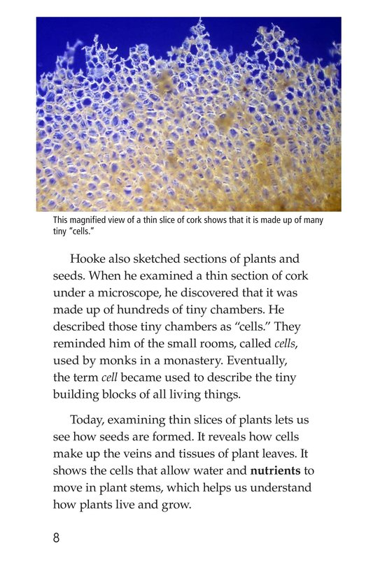 Book Preview For Through a Microscope Page 8