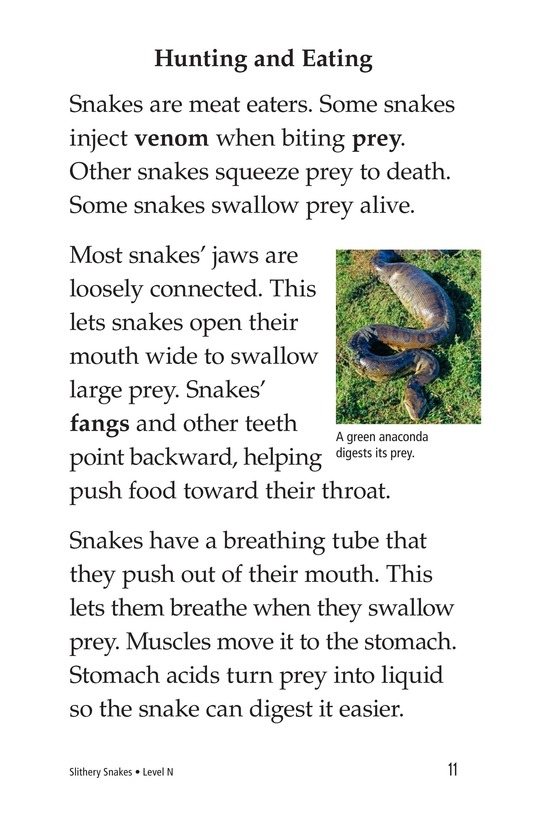 Book Preview For Slithery Snakes Page 11