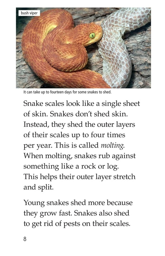 Book Preview For Slithery Snakes Page 8