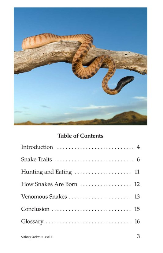 Book Preview For Slithery Snakes Page 3