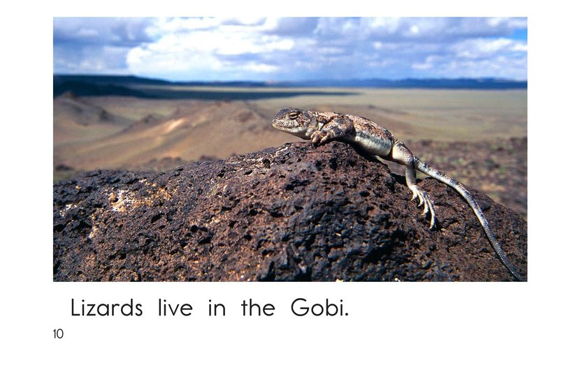 Book Preview For Gobi Desert Animals Page 10