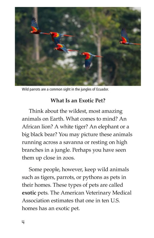 Book Preview For The Trouble with Exotic Pets Page 4