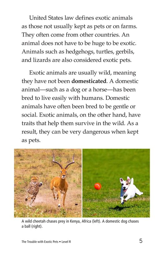 Book Preview For The Trouble with Exotic Pets Page 5