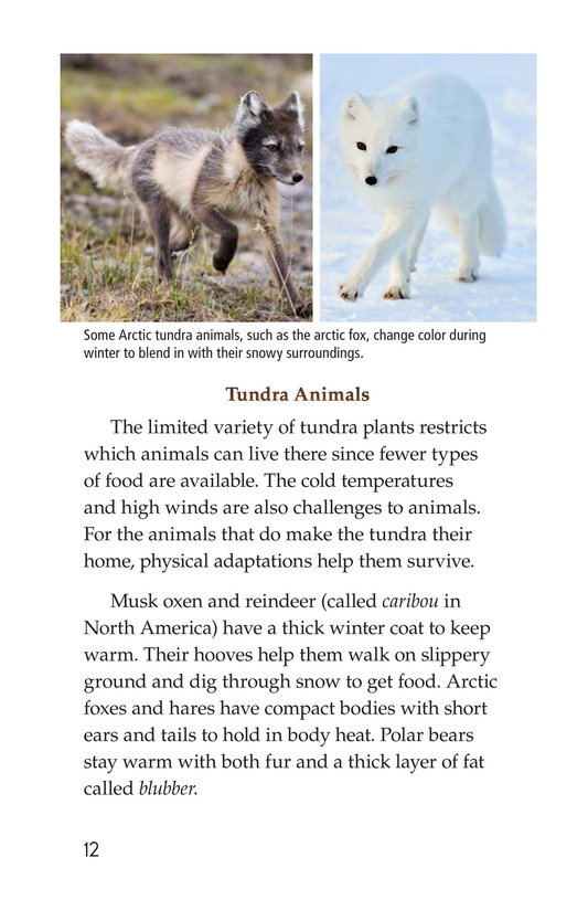 Book Preview For Tundra Page 12