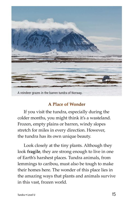 Book Preview For Tundra Page 15