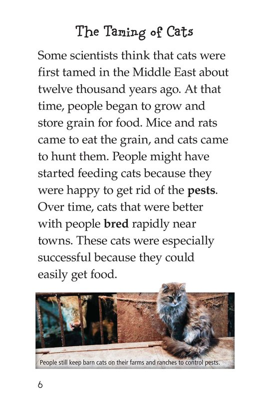 Book Preview For The History of House Cats Page 6