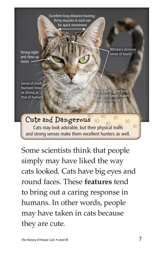 Book Preview For The History of House Cats Page 7