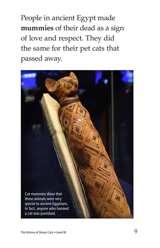 Book Preview For The History of House Cats Page 9