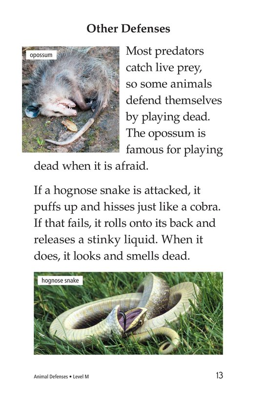Book Preview For Animal Defenses Page 13