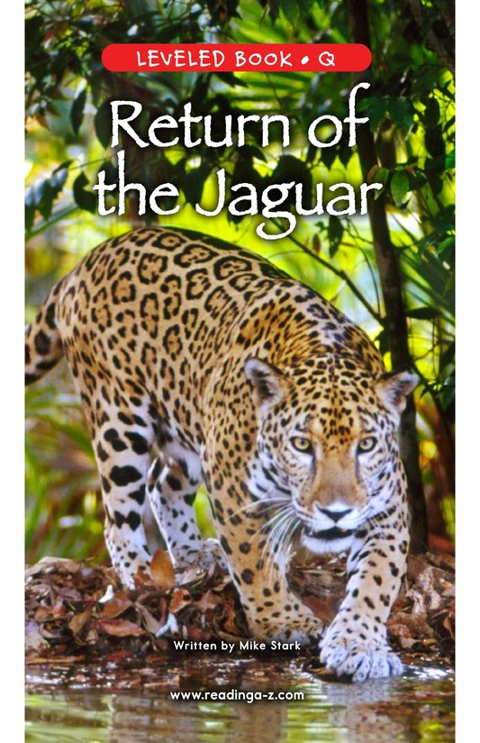 Book Preview For Return of the Jaguar Page 0