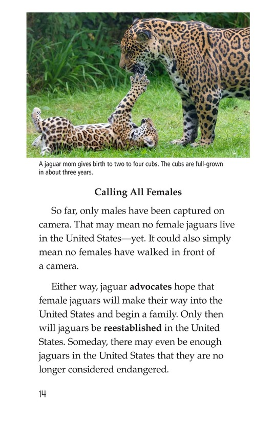 Book Preview For Return of the Jaguar Page 14