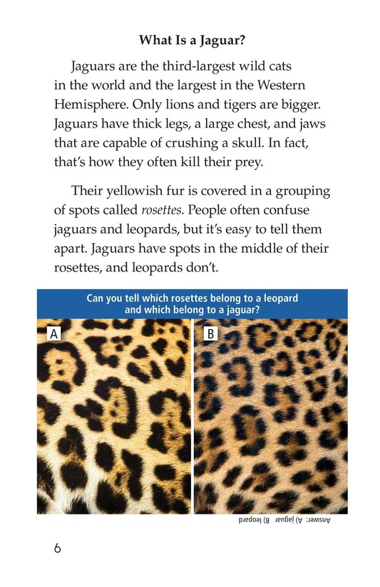 Book Preview For Return of the Jaguar Page 6