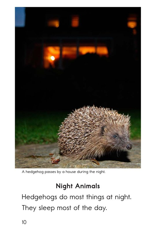 Book Preview For Hedgehogs Page 10