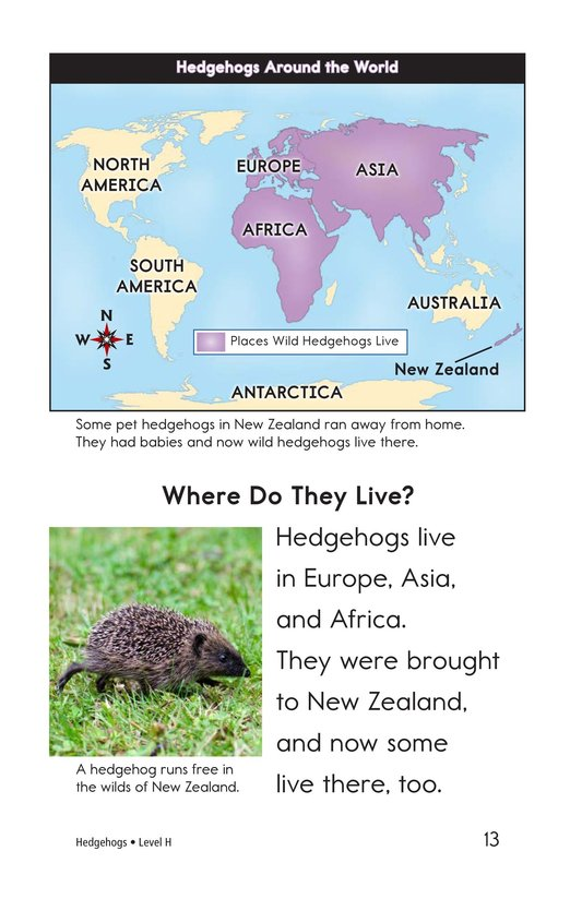 Book Preview For Hedgehogs Page 13