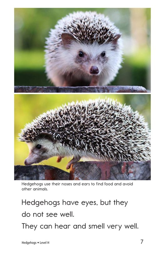 Book Preview For Hedgehogs Page 7