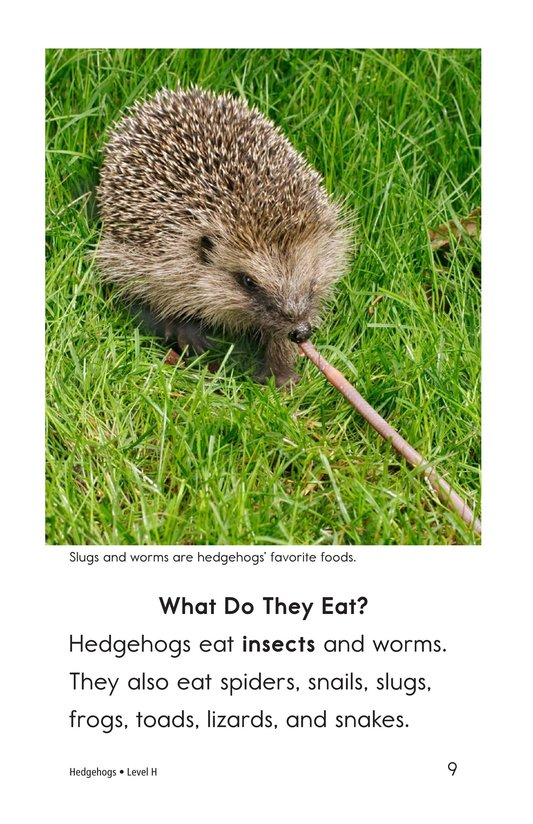 Book Preview For Hedgehogs Page 9