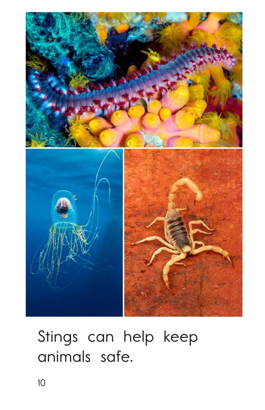 Book Preview For Animals That Sting Page 10