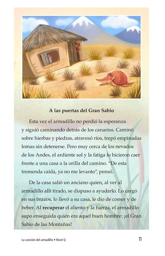 Book Preview For La canción del armadillo Page 11