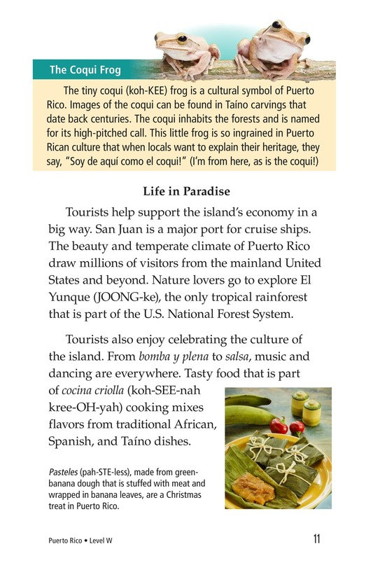 Book Preview For Puerto Rico Page 11