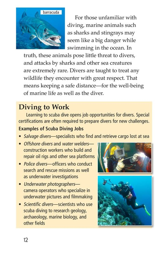 Book Preview For Scuba Page 12