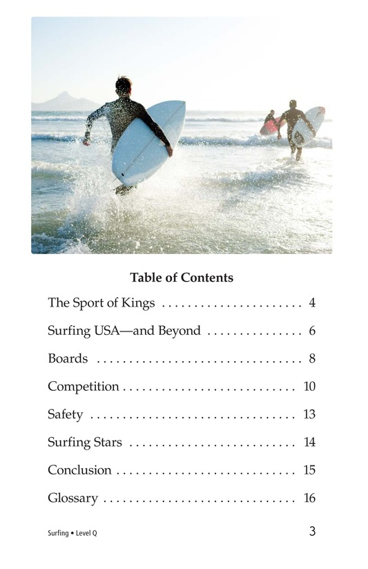 Book Preview For Surfing Page 3