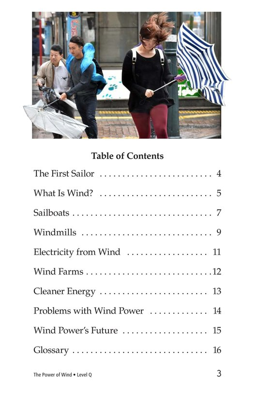 Book Preview For The Power of Wind Page 3