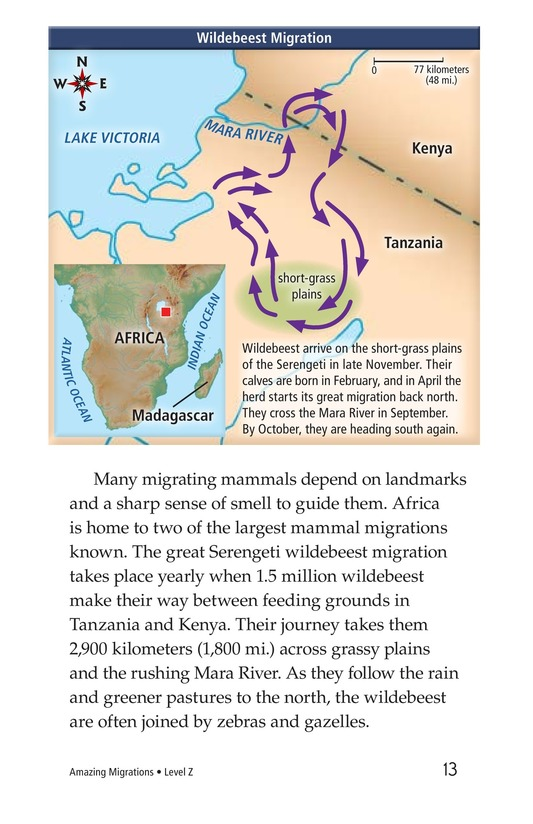 Book Preview For Amazing Migrations Page 13