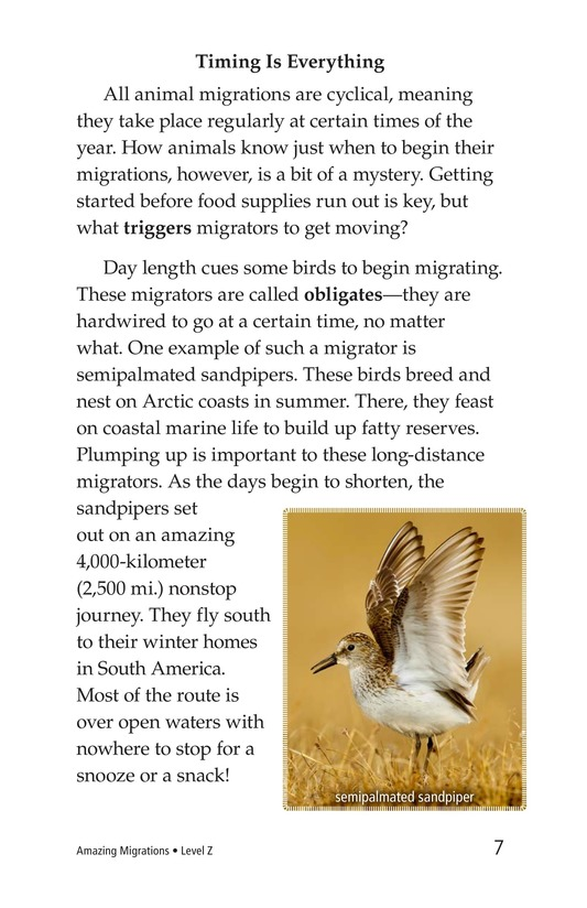 Book Preview For Amazing Migrations Page 7