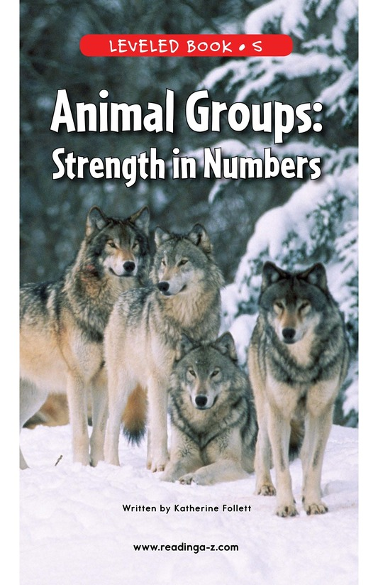 Book Preview For Animal Groups: Strength in Numbers Page 0