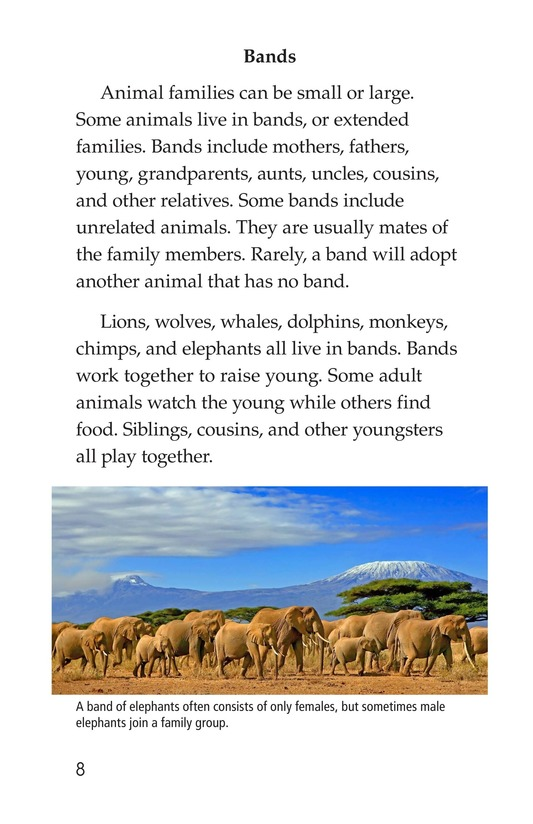 Book Preview For Animal Groups: Strength in Numbers Page 8