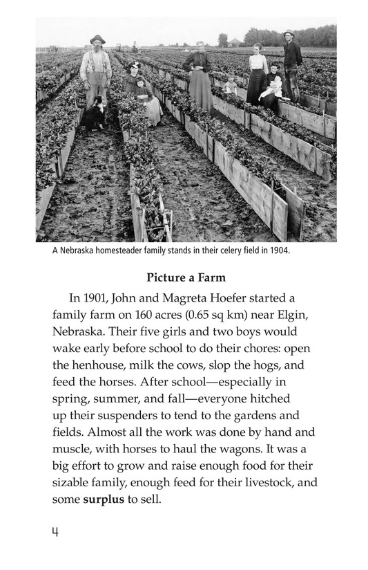 Book Preview For American Farms: Past, Present, and Future Page 4