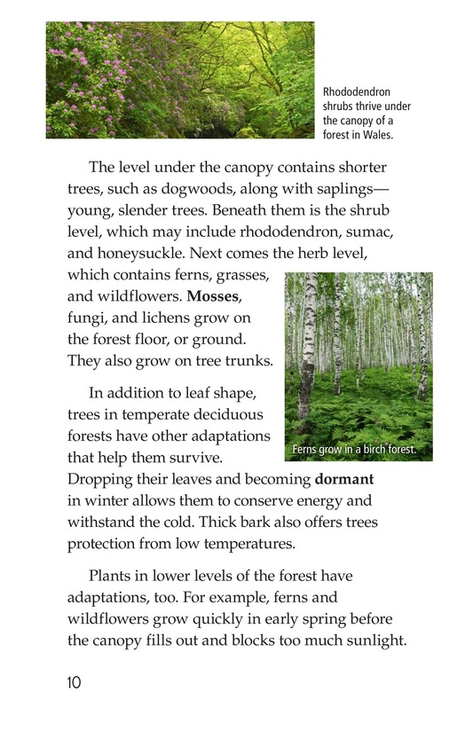 Book Preview For Temperate Deciduous Forests Page 10
