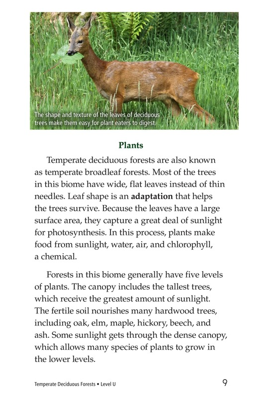 Book Preview For Temperate Deciduous Forests Page 9