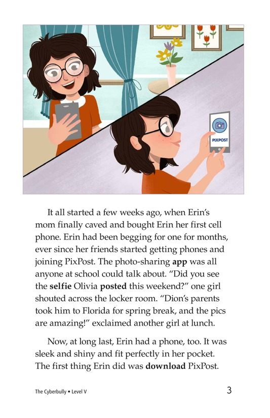 Book Preview For The Cyberbully Page 3