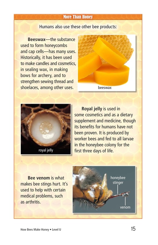 Book Preview For How Bees Make Honey Page 15