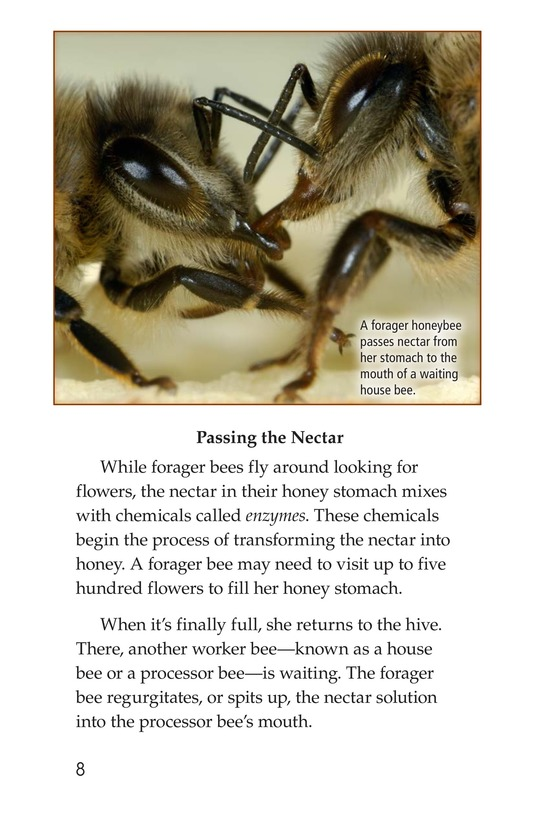 Book Preview For How Bees Make Honey Page 8
