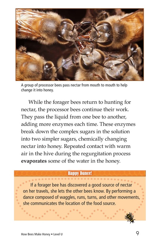 Book Preview For How Bees Make Honey Page 9