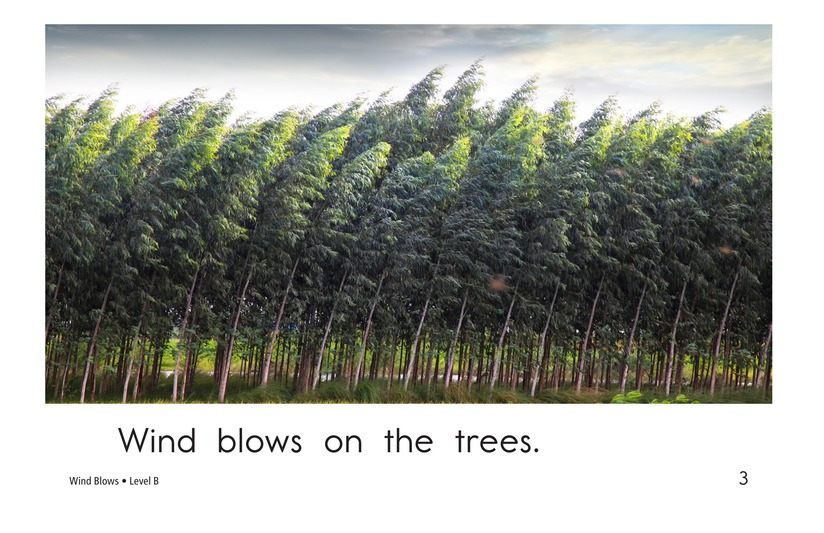 Book Preview For Wind Blows Page 3