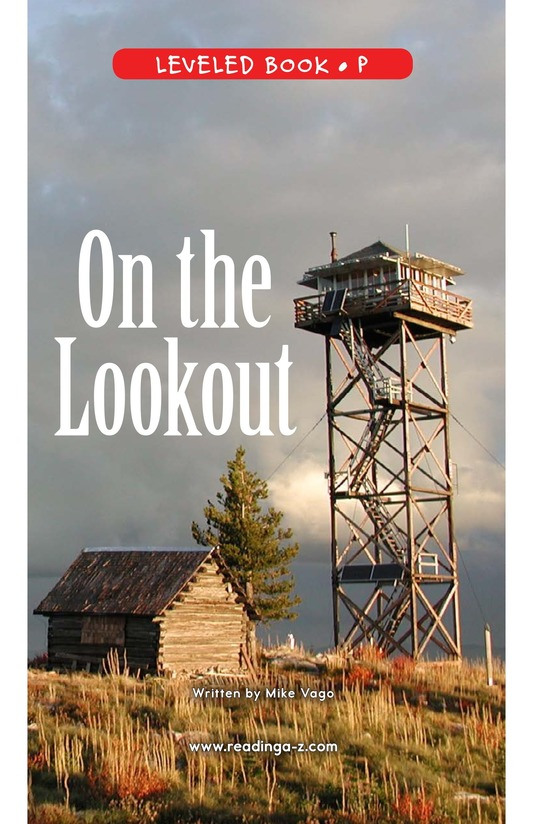 Book Preview For On the Lookout Page 0