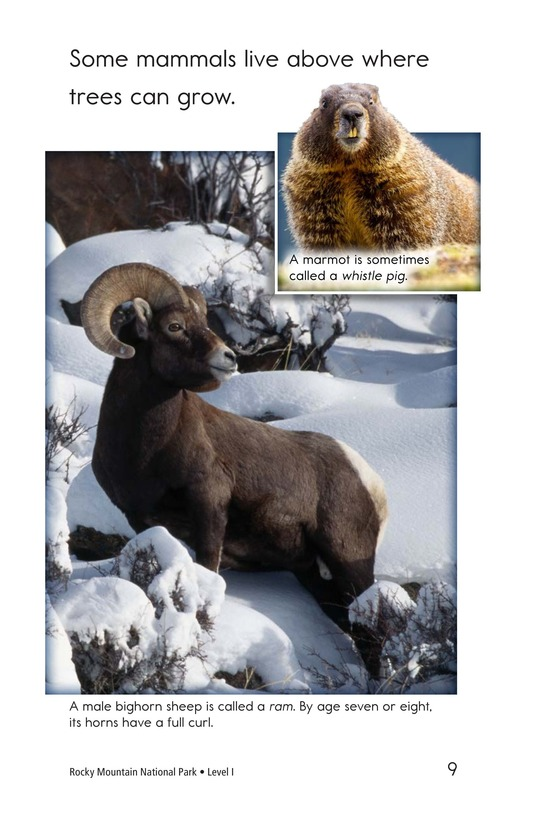 Book Preview For Rocky Mountain National Park Page 9