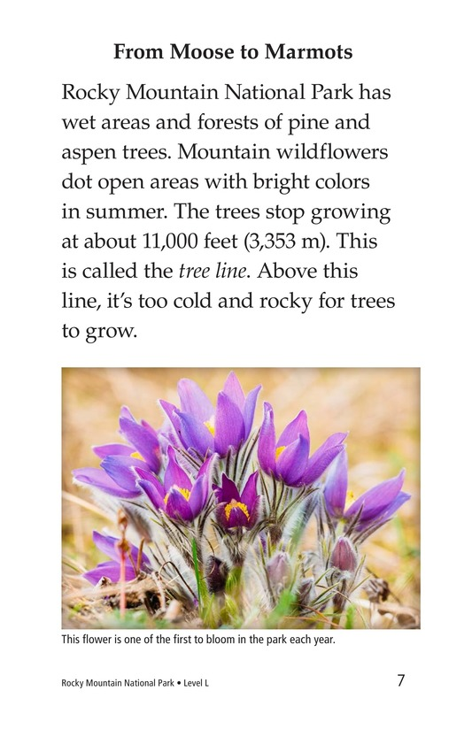 Book Preview For Rocky Mountain National Park Page 7