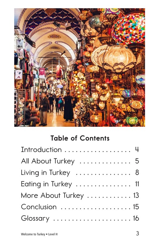 Book Preview For Welcome to Turkey Page 3
