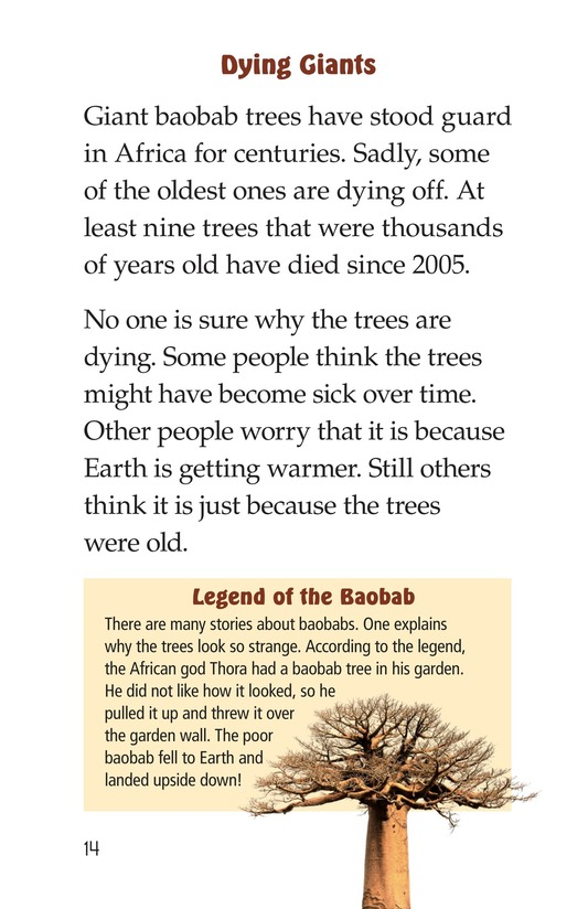 Book Preview For The Baobab Page 14