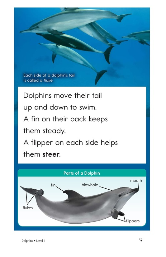 Book Preview For Dolphins Page 9